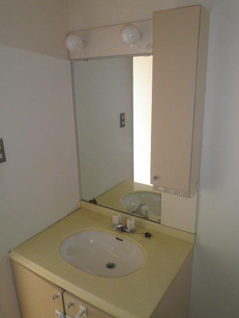 ウスイグリーンビル 401号室の洗面所