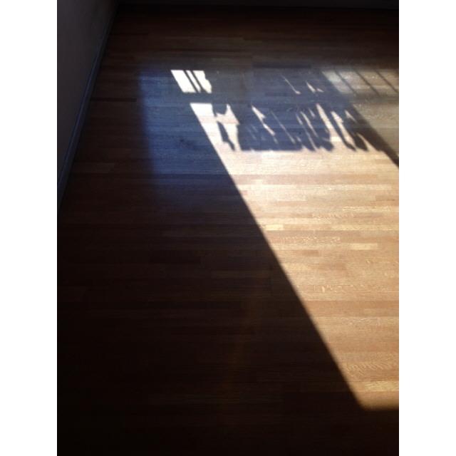 ニュー柏ハイツ 201号室のリビング