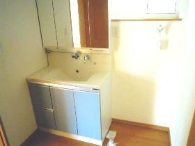 大鋸戸建の洗面所