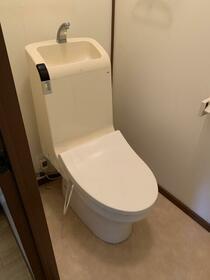 細谷ハイツ 202号室のトイレ