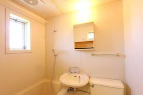 ホワイトヒルズ 202号室の洗面所
