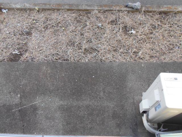 グリーンプラザ 203号室の風呂