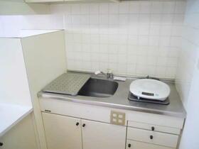 ハンプトンコートひばりヶ丘 204号室のキッチン