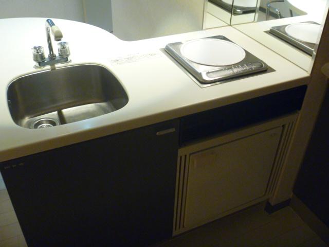 サンピア平塚 206号室の洗面所