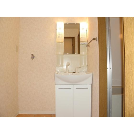 クレベール 301号室の洗面所
