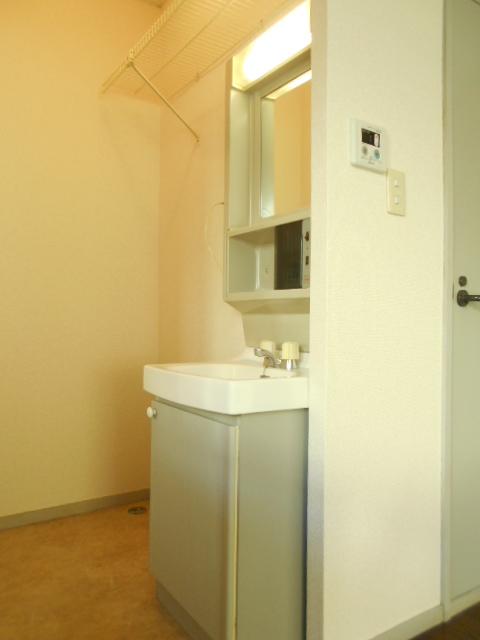 グリーンヒルTOMURO D 101号室の洗面所