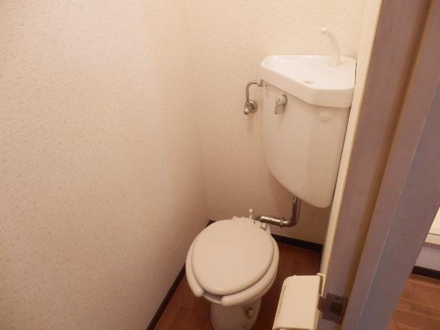 志田ハイツ 203号室のトイレ
