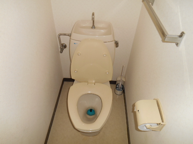 グリーンハイツ野本 201号室のトイレ