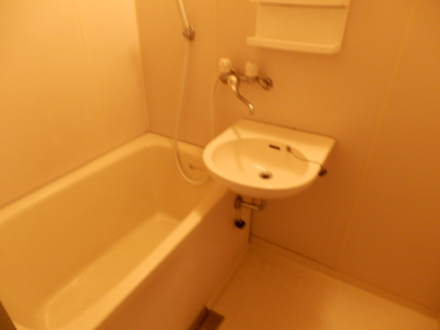 ナカマルハイツⅡ 205号室の洗面所