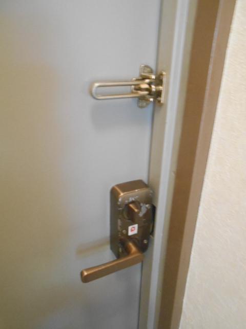 ハイネス下野谷 201号室のセキュリティ