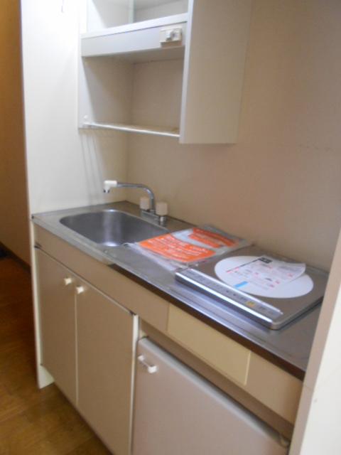 ハイネス下野谷 201号室のキッチン