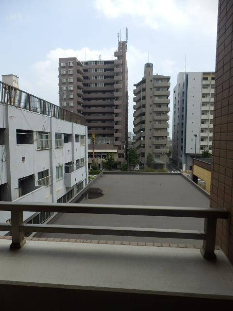 スペーシア川崎Ⅲ 411号室の景色