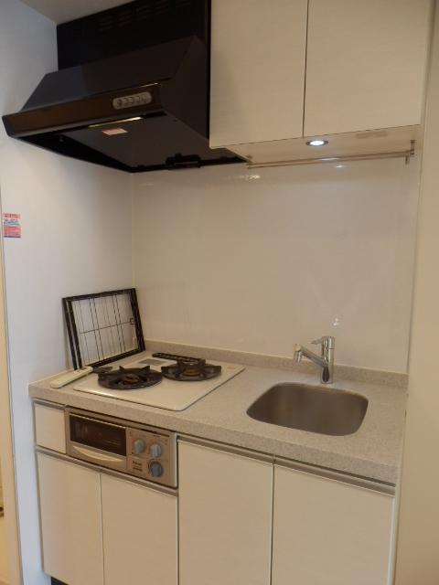 スペーシア川崎Ⅲ 411号室のキッチン