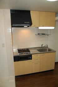 グランパレス 203号室のキッチン