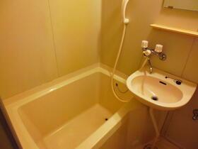 ガーデンヒルズ池上 203号室の風呂