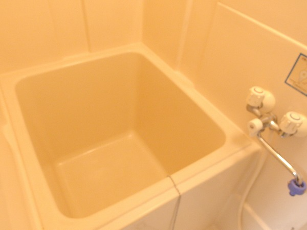 藤荘 1-A号室の風呂