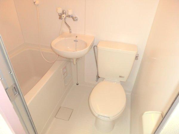 ゴールドパーク 204号室の風呂
