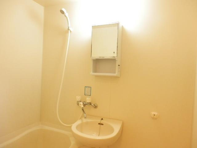 メゾン柏A 1号室の洗面所