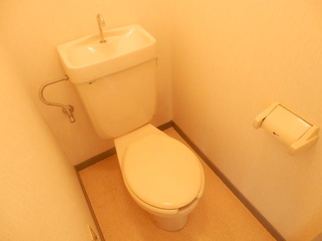 メゾンドカルムA 202号室のトイレ