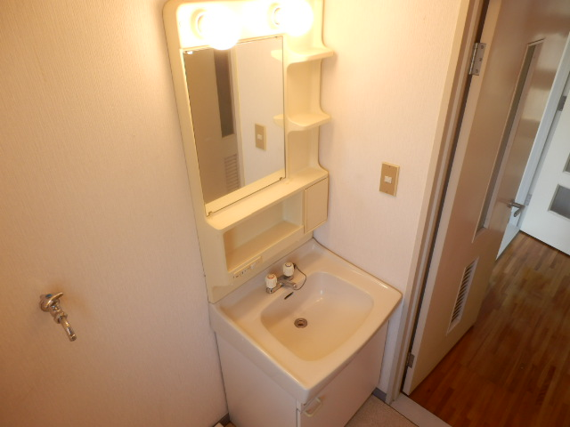 メゾンドカルムA 202号室の洗面所