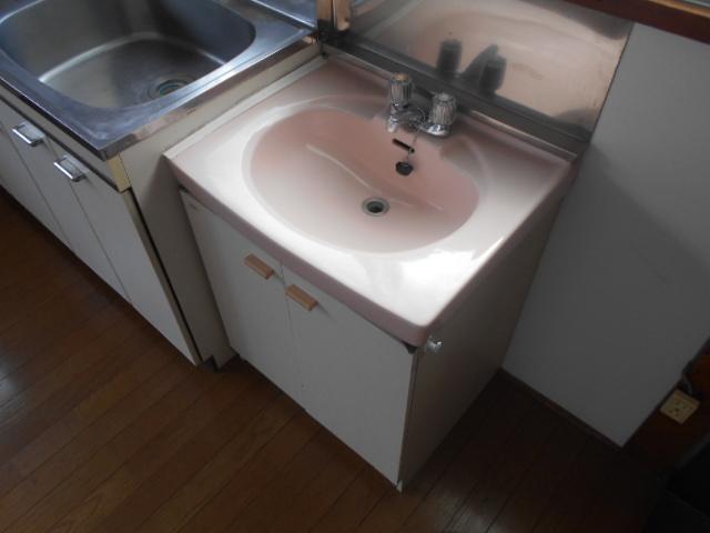 コーポ司 201号室の洗面所