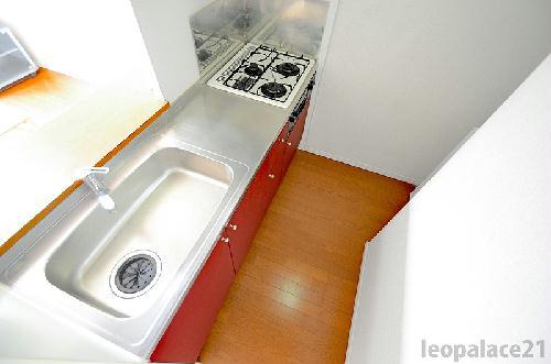 レオパレスブラウンブレッド 110号室のキッチン