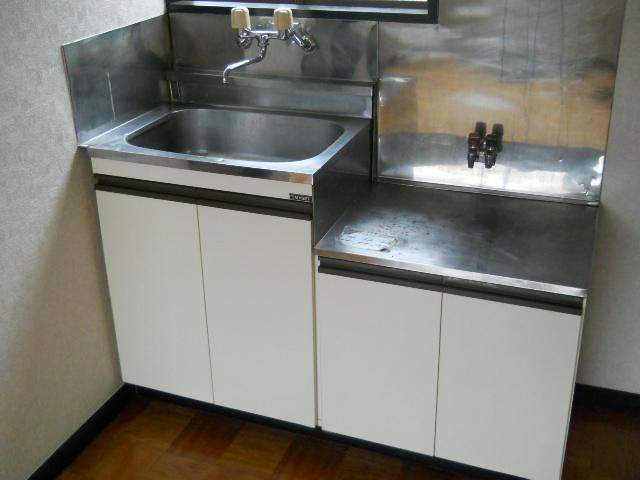 アムール東大和 101号室のキッチン