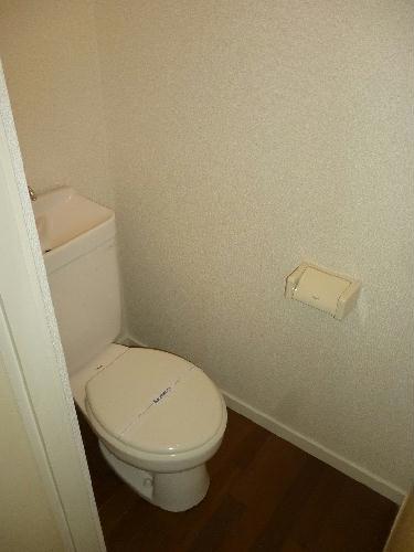 レオパレスSAYAMA 102号室のトイレ