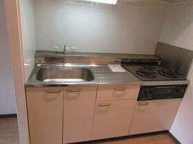 メゾン・ドゥ・ラポート羽村Ⅱ 105号室のキッチン