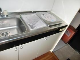 リバーサイド布萬 303号室のキッチン
