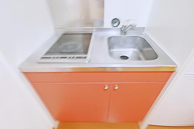 カーサロイヤル福生 204号室のキッチン