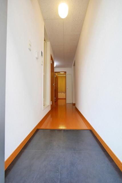 カーサロイヤル福生 204号室の玄関
