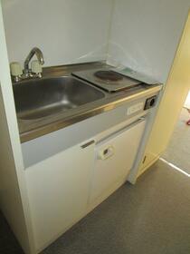 フリーゲンハイム 203号室のキッチン