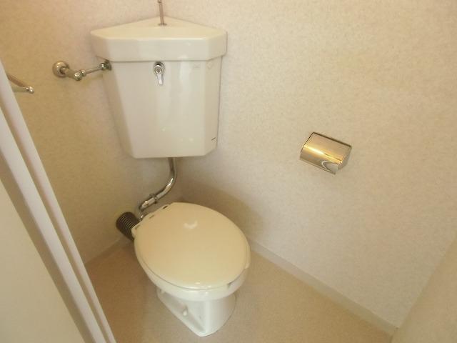 メゾンド・石川 301号室のトイレ