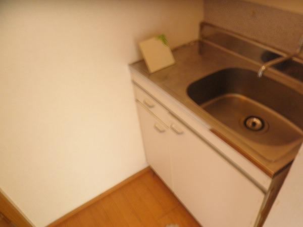 桂ビル 203号室のキッチン