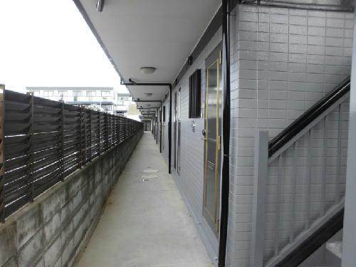 レオパレスBOUGAKU A 307号室のエントランス