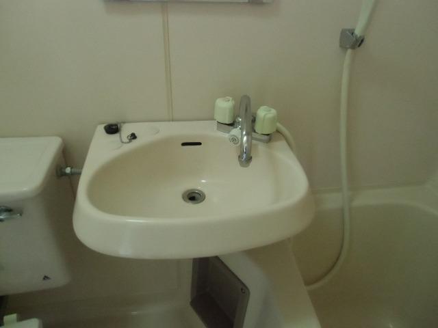 セゾン 305号室の洗面所