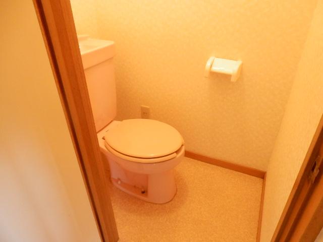 シュロス京南 301号室のトイレ
