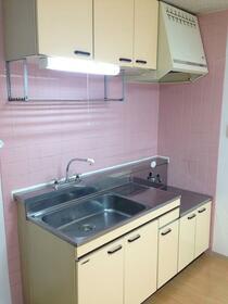 サンヒルズヨコハマ 304号室のキッチン