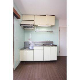 スカイラークタウンⅡ号館 201号室のキッチン