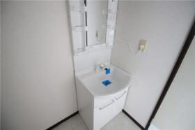 メゾン新横浜A 202号室の洗面所