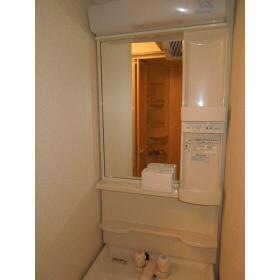 ダイアパレス三ツ沢公園東・西館 E106号室の洗面所