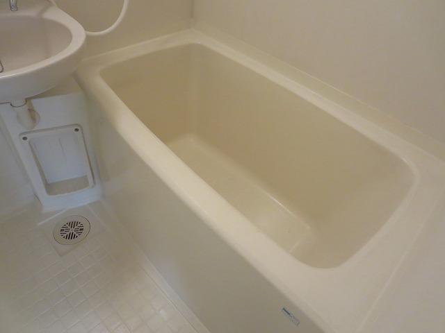 第二ローレルハイツ大岡山 101号室の風呂