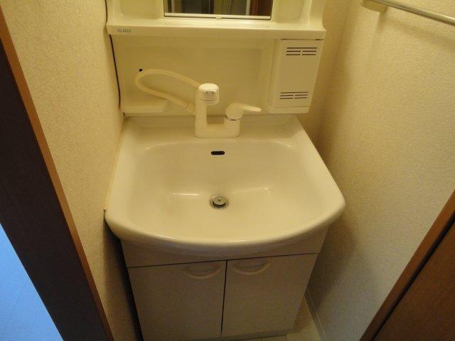リバーサイドJS 106号室の洗面所