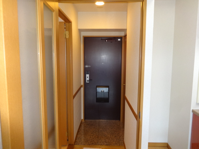 ヴェルジュコートⅠ 804号室の玄関
