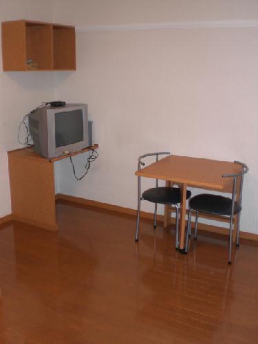 レオパレスマリーゴールド 211号室のリビング