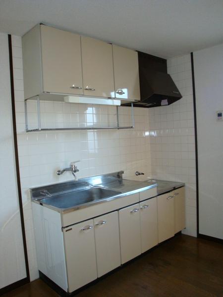リバーサイド三日月 301号室のキッチン