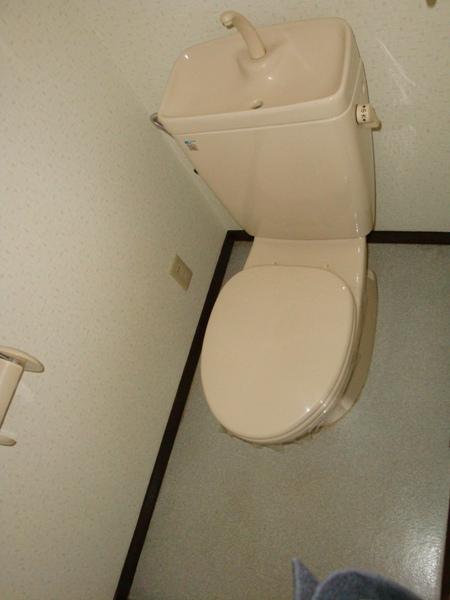 リバーサイド三日月 301号室のトイレ