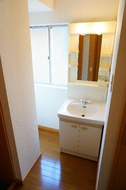 コーポのぼる 202号室の洗面所