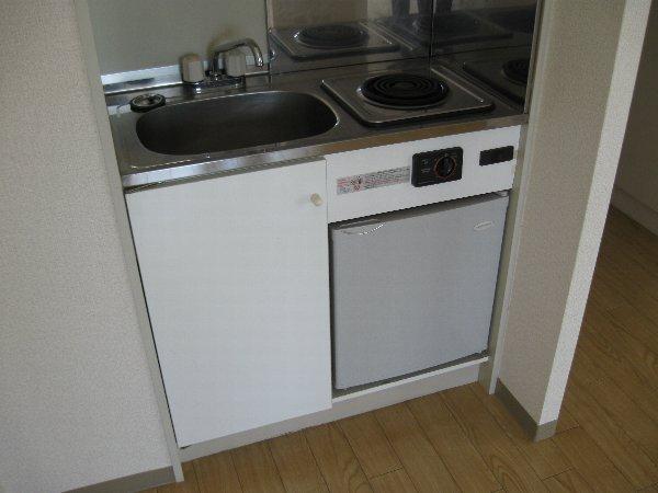ラフィネ新栄 508号室のキッチン